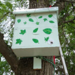 Swarm trap hanging at the Huppstead