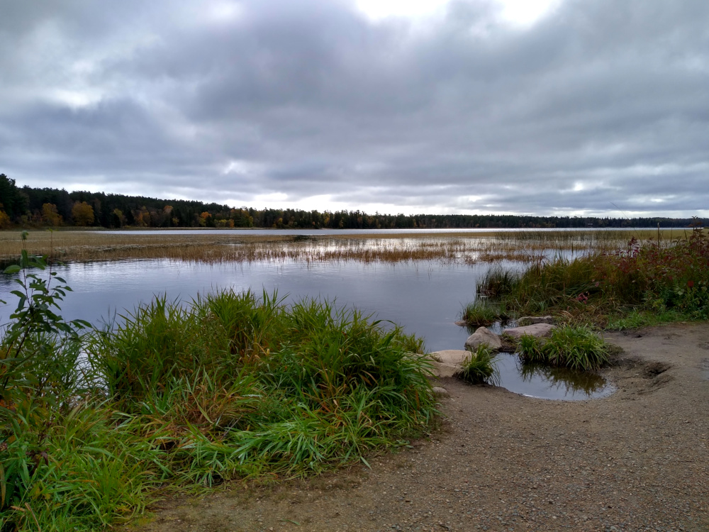 Itasca Lake at the Mississippi outflow.