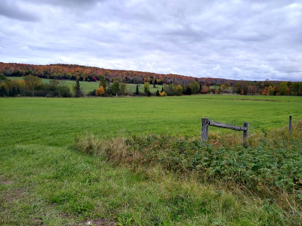 Upper Peninsula Autumn Farmstead